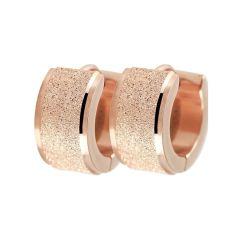Women's steel earrings Akzent A505339